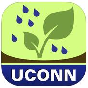 rain garden icon